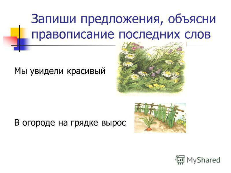 Запиши предложения, объясни правописание последних слов Мы увидели краскивый В огородде на грядке вырос