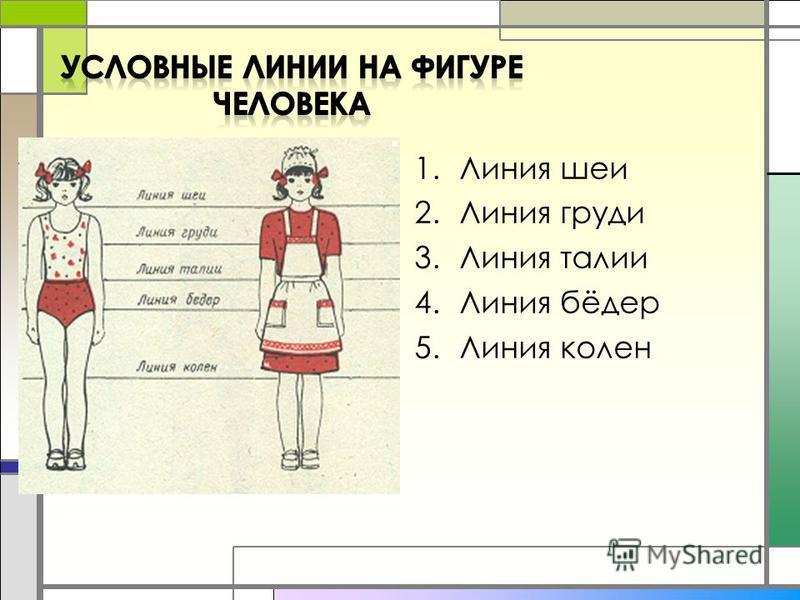 1. Линия шеи 2. Линия груди 3. Линия талии 4. Линия бёдер 5. Линия колен