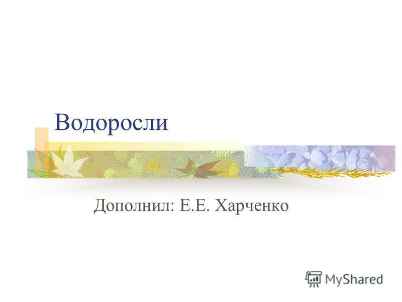 Водоросли Дополнил: Е.Е. Харченко