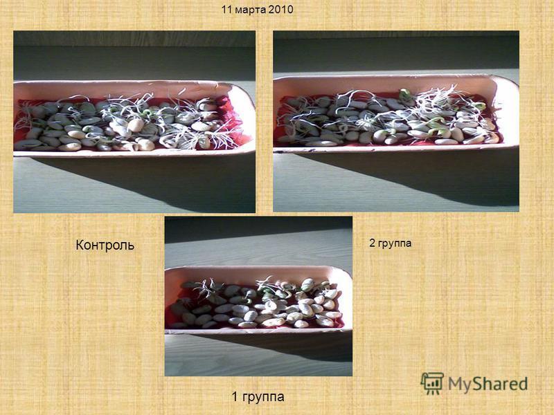 11 марта 2010 2 группа Контроль 1 группа