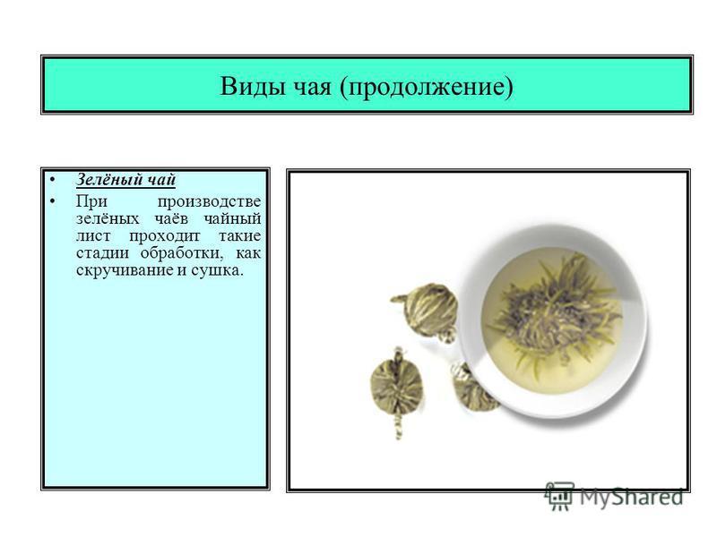 Виды чая (продолжение) Зелёный чай При производстве зелёных чаёв чайный лист проходит такие стадии обработки, как скручивание и сушка.