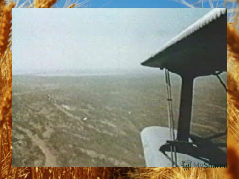 ФГПКлимат ПочваРастения Животные Лесо- степь