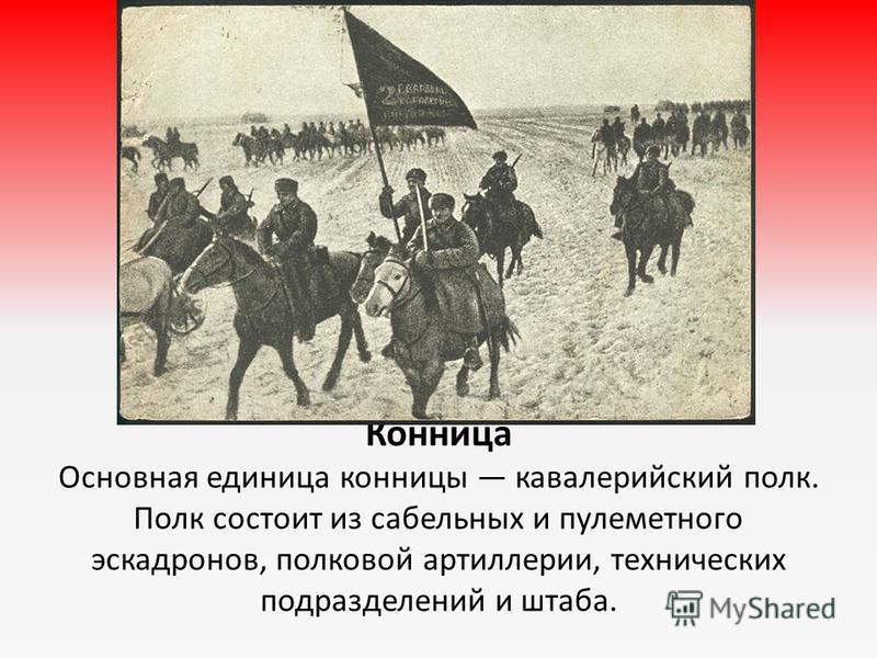 Конница Основная единица конницы кавалерийский полк. Полк состоит из сабельных и пулеметного эскадронов, полковой артиллерии, технических подразделений и штаба.