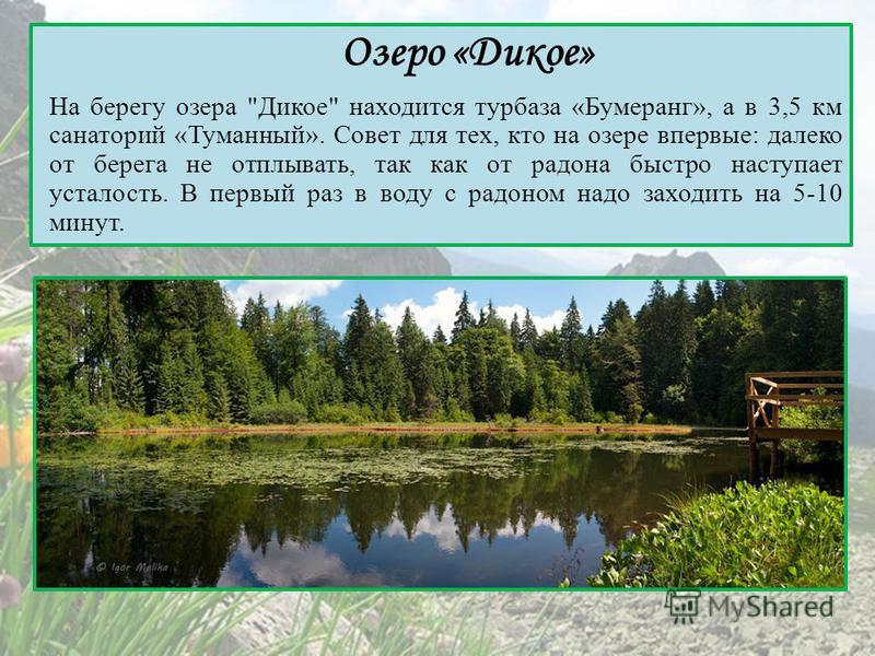 Озеро «Дикое» На берегу озера