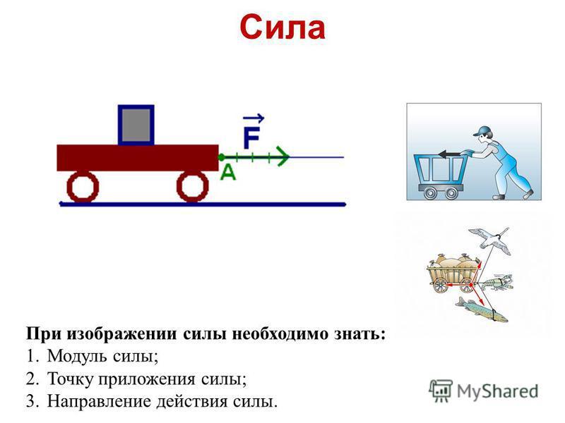 Сила При изображении силы необходимо знать: 1. Модуль силы; 2. Точку приложения силы; 3. Направление действия силы.