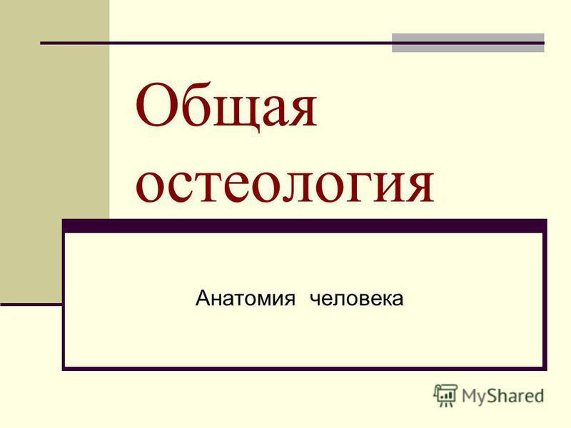 Общая остеология Анатомия человека
