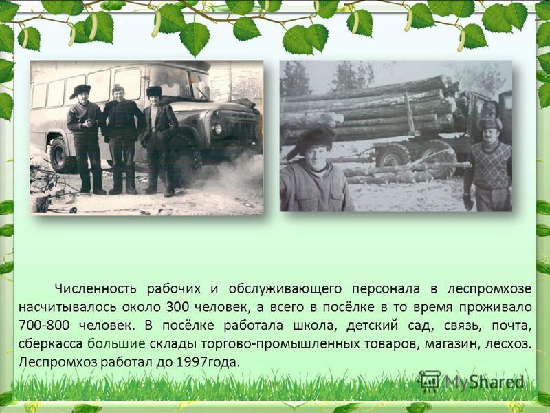 Численность рабочих и обслуживающего персонала в леспромхозе насчитывалось около 300 человек, а всего в посёлке в то время проживало 700-800 человек. В посёлке работала школа, детский сад, связь, почта, сберкасса большие склады торгово-промышленных т