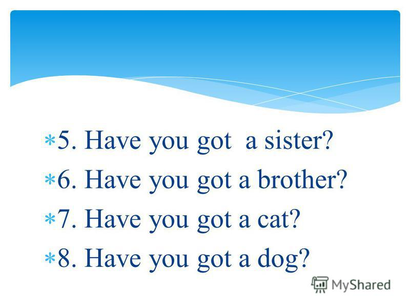 5. Have you got a sister? 6. Have you got a brother? 7. Have you got a cat? 8. Have you got a dog?