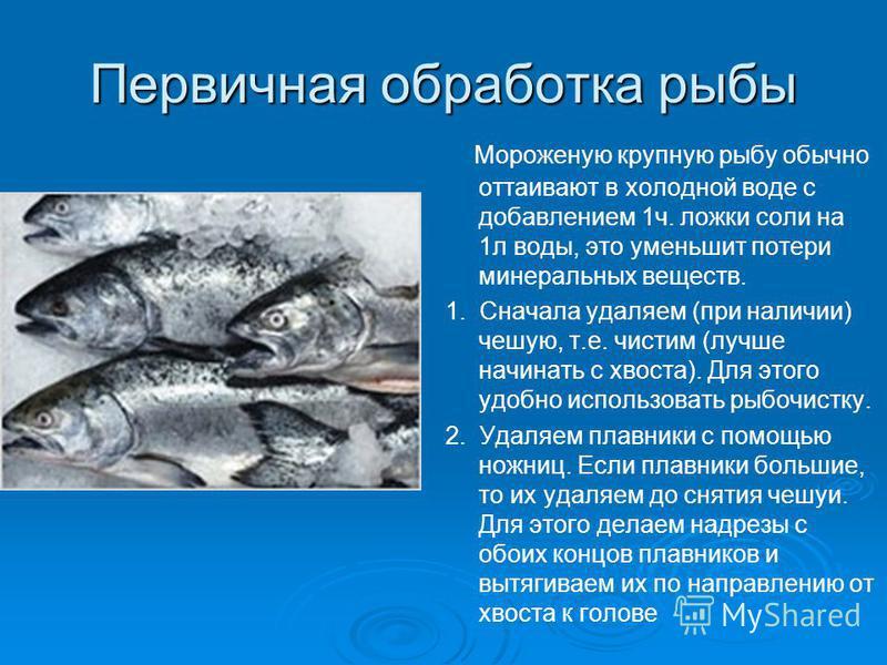 Первичная обработка рыбы Мороженую крупную рыбу обычно оттаивают в холодной воде с добавлением 1 ч. ложки соли на 1 л воды, это уменьшит потери минеральных веществ. 1. Сначала удаляем (при наличии) чешую, т.е. чистим (лучше начинать с хвоста). Для эт