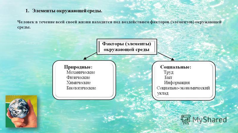 1. Элементы окружающей среды. Человек в течение всей своей жизни находится под воздействием факторов (элементов) окружающей среды.