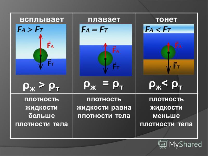 всплываетплаваеттонет плотность жидкости больше плотности тела плотность жидкости равна плотности тела плотность жидкости меньше плотности тела < ρтρж< ρт< ρтρж< ρт = ρ т ρ ж = ρ т > ρтρж > ρт > ρтρж > ρт