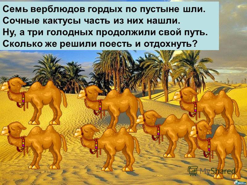 Семь верблюдов гордых по пустыне шли. Сочные кактусы часть из них нашли. Ну, а три голодных продолжили свой путь. Сколько же решили поесть и отдохнуть?