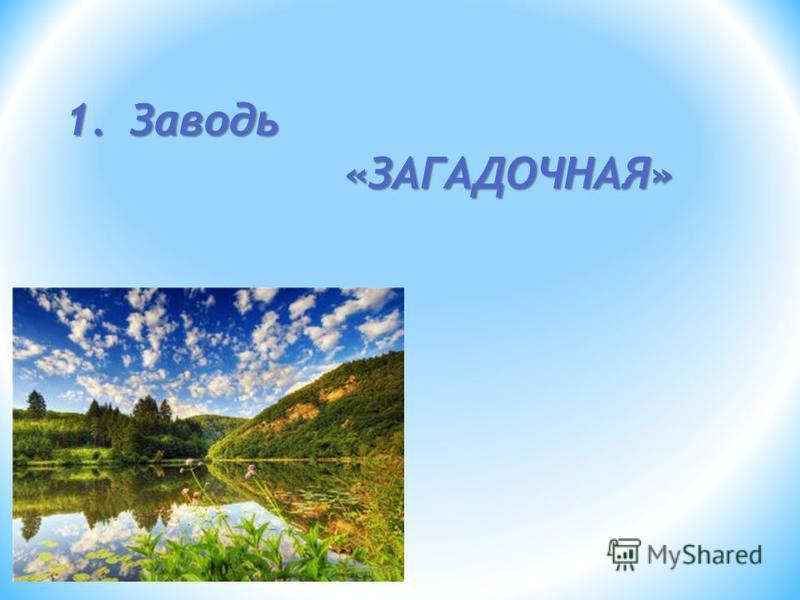 1. Заводь «ЗАГАДОЧНАЯ» «ЗАГАДОЧНАЯ»