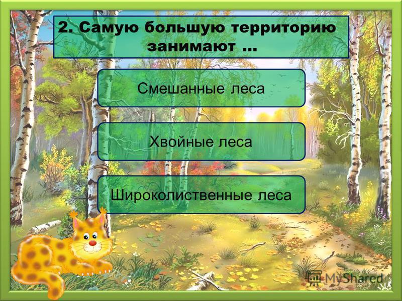 Хвойные леса Смешанные леса Широколиственные леса 2. Самую большую территорию занимают …