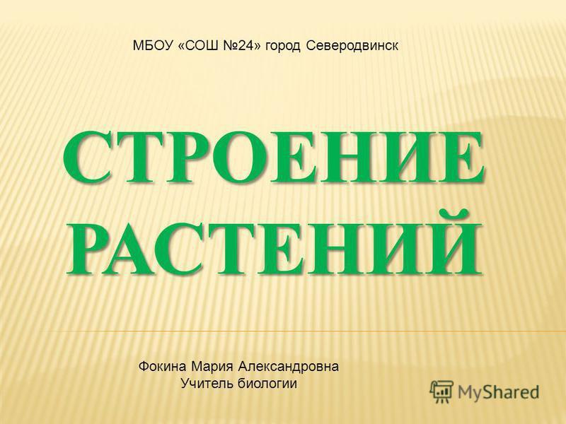 МБОУ «СОШ 24» город Северодвинск Фокина Мария Александровна Учитель биологии
