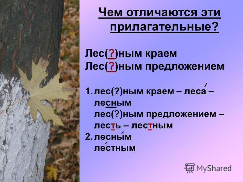 Чем отличаются эти прилагательные? Лес(?)ним краем Лес(?)ним предложением 1.лес(?)ним краем – леса – лесним лес(?)ним предложением – лесть – лестним 2. лесним лестним