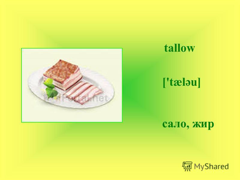 tallow ['tælәu] сало, жир