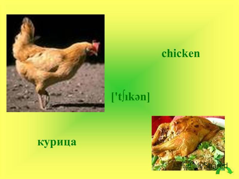 chicken ['tıkәn] курица