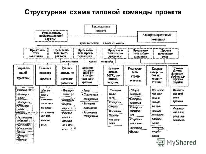 Структурная схема типовой команды проекта