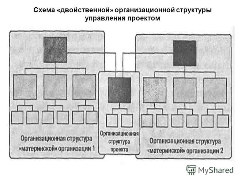 Схема «двойственной» организационной структуры управления проектом