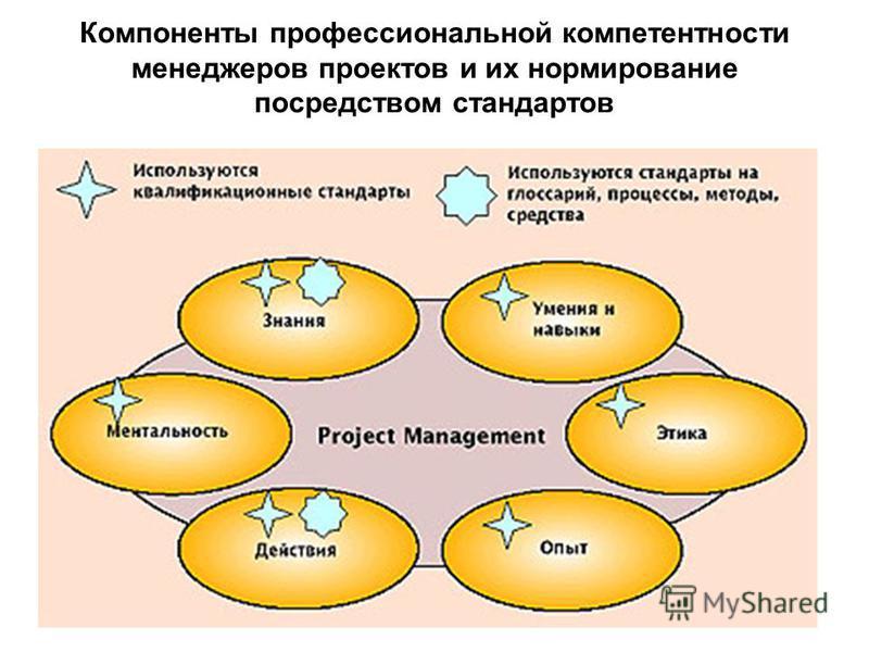 Компоненты профессиональной компетентности менеджеров проектов и их нормирование посредством стандартов