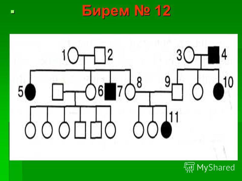 Бирем 12 Бирем 12