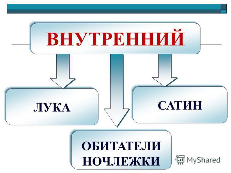 ЛУКА ОБИТАТЕЛИ НОЧЛЕЖКИ САТИН ВНУТРЕННИЙ