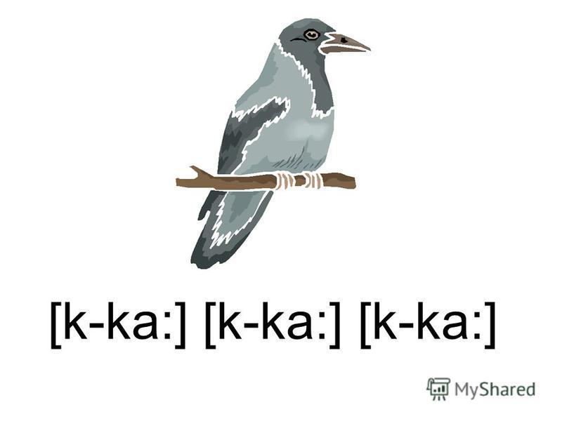 [k-ka:] [k-ka:] [k-ka:]
