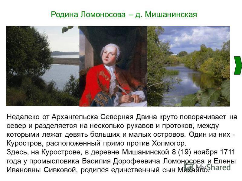 Родина Ломоносова – д. Мишанинская Недалеко от Архангельска Северная Двина круто поворачивает на север и разделяется на несколько рукавов и протоков, между которыми лежат девять больших и малых островов. Один из них - Куростров, расположенный прямо п