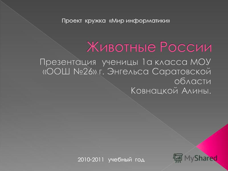 Проект кружка «Мир информатики» 2010-2011 учебный год