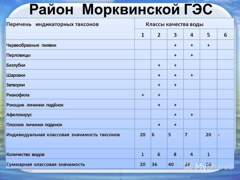 Район Морквинской ГЭС 12.08.201510