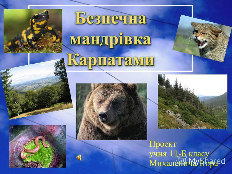 Проект учня 11-Б класу Михаленича Ігора
