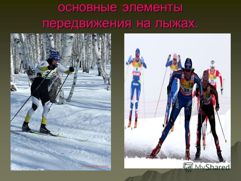 основные элементы передвижения на лыжах.