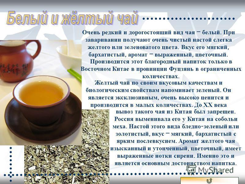 вывоз такого чая из Китая был запрещен. Россия выменивала его у Китая на собольи меха. Настой этого вида бледно - зеленый или золотистый, вкус – мягкий, бархатистый с ярким послевкусием. Аромат желтого чая изысканный и утонченный, цветочный, имеет вы