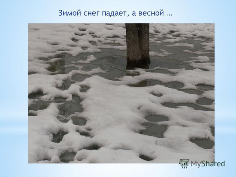 Зимой снег падает, а весной...