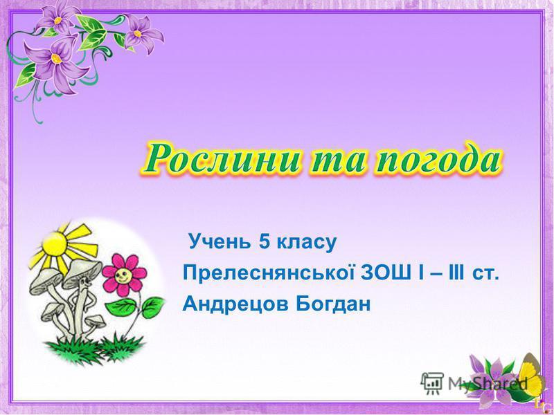 Учень 5 класу Прелеснянської ЗОШ І – ІІІ ст. Андрецов Богдан