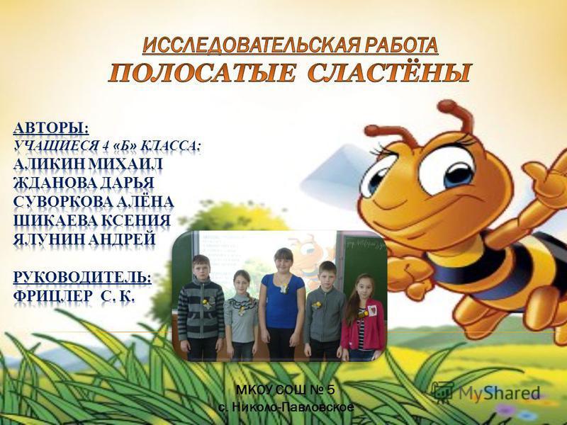 МКОУ СОШ 5 с. Николо-Павловское