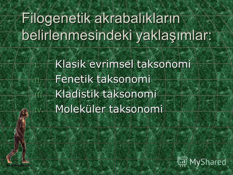 Filogenetik akrabalıkların belirlenmesindeki yaklaşımlar: I. Klasik evrimsel taksonomi II. Fenetik taksonomi III. Kladistik taksonomi IV. Moleküler taksonomi