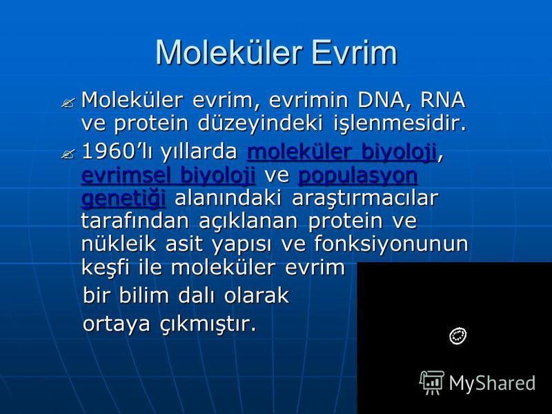 Moleküler Evrim Moleküler evrim, evrimin DNA, RNA ve protein düzeyindeki işlenmesidir. Moleküler evrim, evrimin DNA, RNA ve protein düzeyindeki işlenmesidir. 1960lı yıllarda moleküler biyoloji, evrimsel biyoloji ve populasyon genetiği alanındaki araş