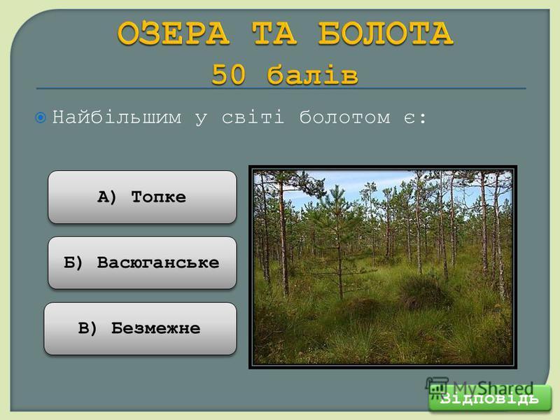 Найбільшим у світі болотом є: Відповідь В) Безмежне Б) Васюганське А) Топке