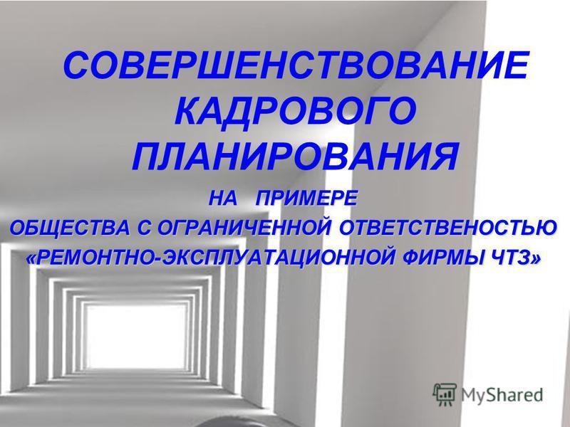 СОВЕРШЕНСТВОВАНИЕ КАДРОВОГО ПЛАНИРОВАНИЯ НА ПРИМЕРЕ ОБЩЕСТВА С ОГРАНИЧЕННОЙ ОТВЕТСТВЕНОСТЬЮ «РЕМОНТНО-ЭКСПЛУАТАЦИОННОЙ ФИРМЫ ЧТЗ»
