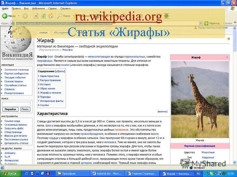 ru.wikipedia.org Статья «Жирафы»