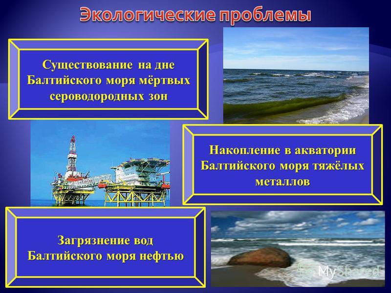 Существование на дне Балтийского моря мёртвых сероводородных зон Загрязнение вод Балтийского моря нефтью Накопление в акватории Балтийского моря тяжёлых металлов