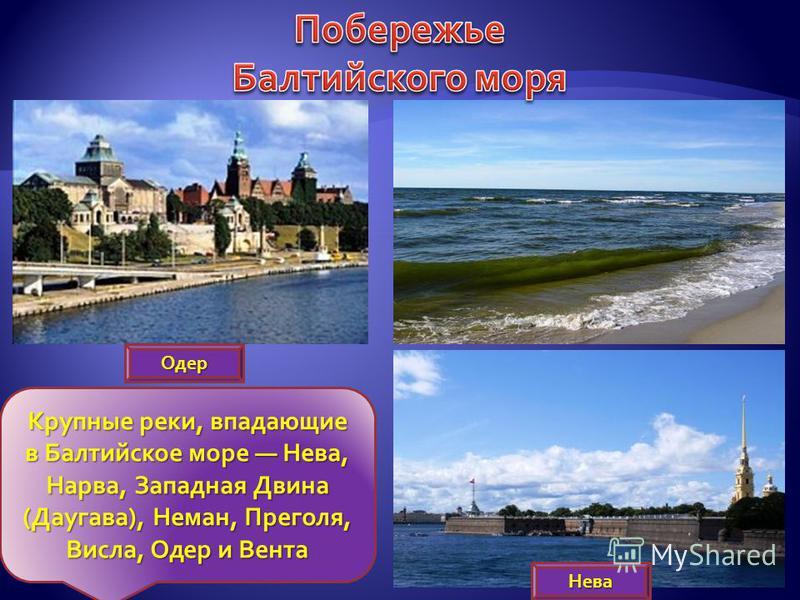 Крупные реки, впадающие в Балтийское море Нева, Нарва, Западная Двина (Даугава), Неман, Преголя, Висла, Одер и Вента Одер Нева