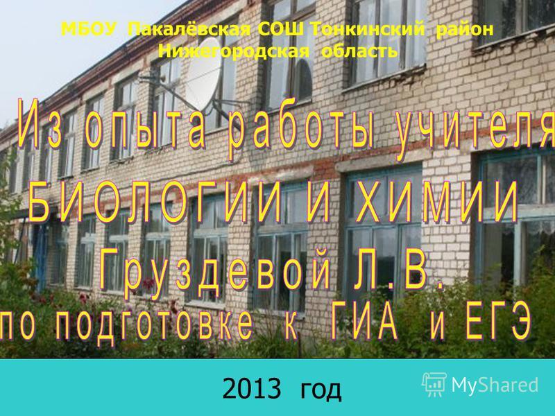 2013 год МБОУ Пакалёвская СОШ Тонкинский район Нижегородская область