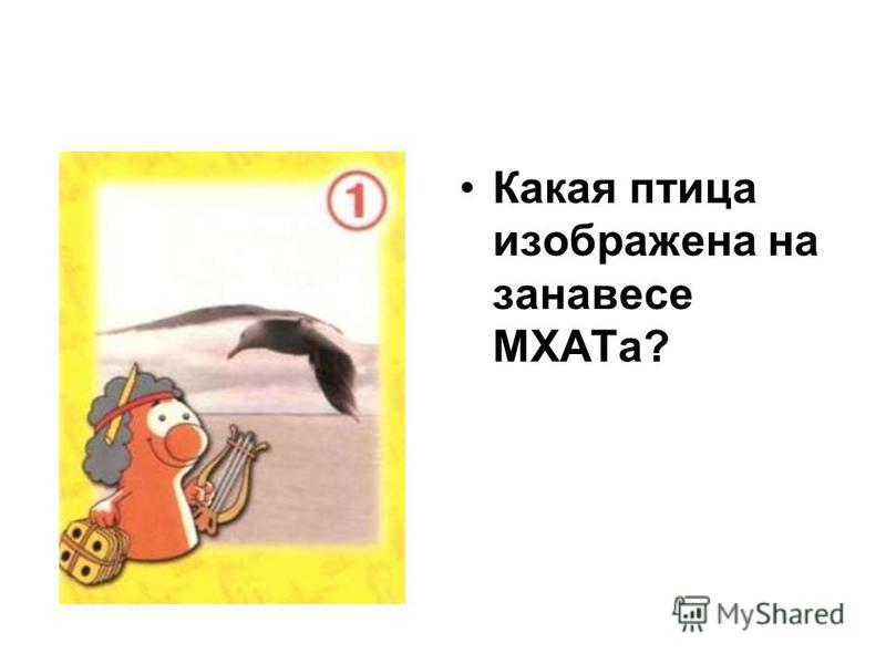 Какая птица изображена на занавесе МХАТа?