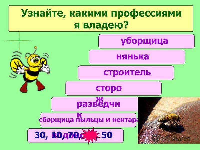 нянька Узнайте, какими профессиями я владею? уборщица строитель сторож разведчик 3 4 5 = 7- сборщица пыльцы и нектара