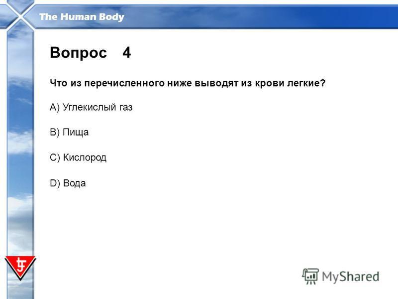 The Human Body 4 Что из перечисленного ниже выводят из крови легкие? Вопрос A) Углекислый газ B) Пища C) Кислород D) Вода