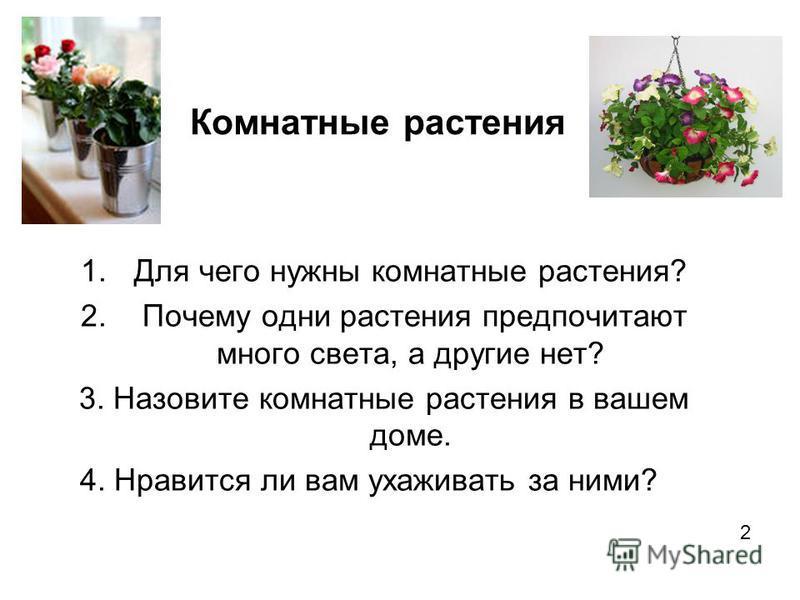 Комнатные растения 1. Для чего нужны комнатные растения? 2. Почему одни растения предпочитают много света, а другие нет? 3. Назовите комнатные растения в вашем доме. 4. Нравится ли вам ухаживать за ними? 2