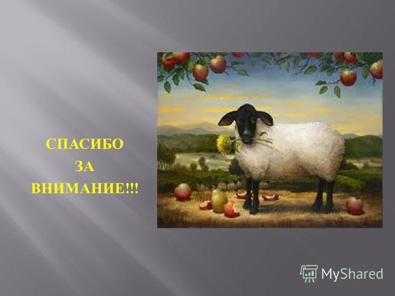 ЯДОВИТЫЕ ТРАВЫ Растения, ядовитые для овец и коз : а паслён чёрный ; б молочай ; в наперстянка ; г вех ядовитый ; д борец ; е чемерица. Коррекциооно-воспитательная: патриотизм, природа окружение, формирование личности обучающихся, развитие навыков са